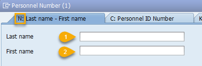 Screenshot of last name and first name search fields.