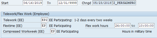 Screenshot of telework flex work employee screen.