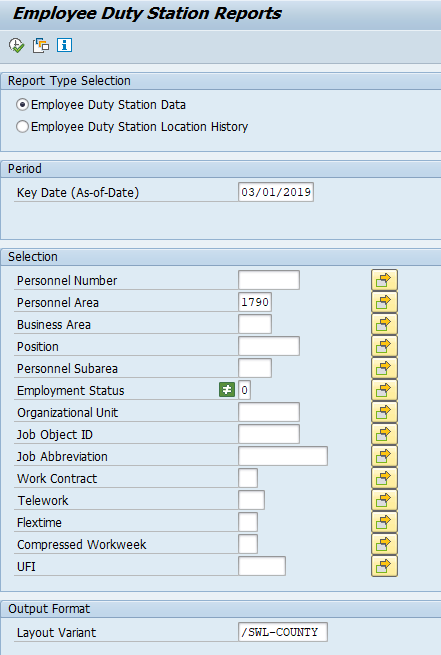 Screenshot of report setup.